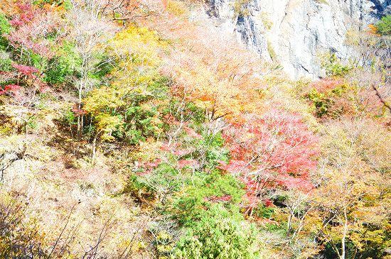 袋田の滝 094