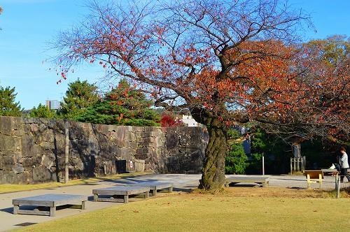 城の秋 006