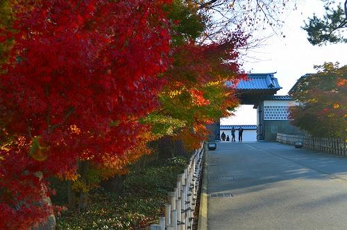 城の秋 010