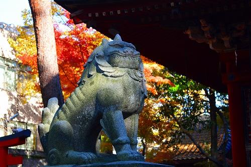 尾崎神社 009