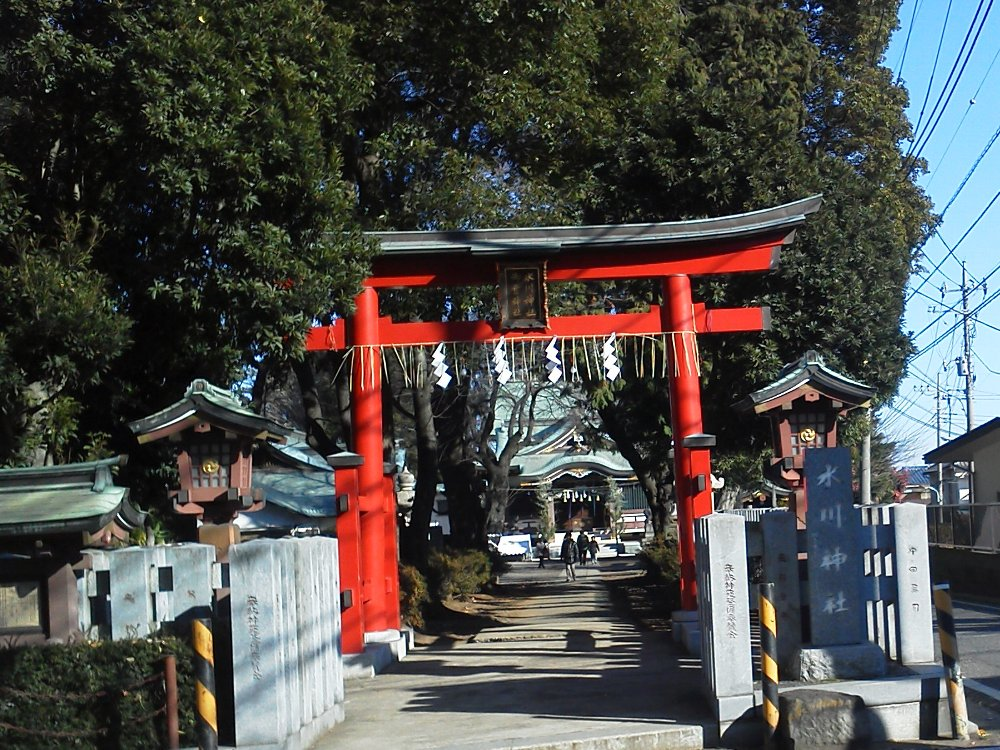 F1001200赤塚氷川神社1月2日