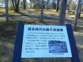 F1001364石神井公園縄文住居跡