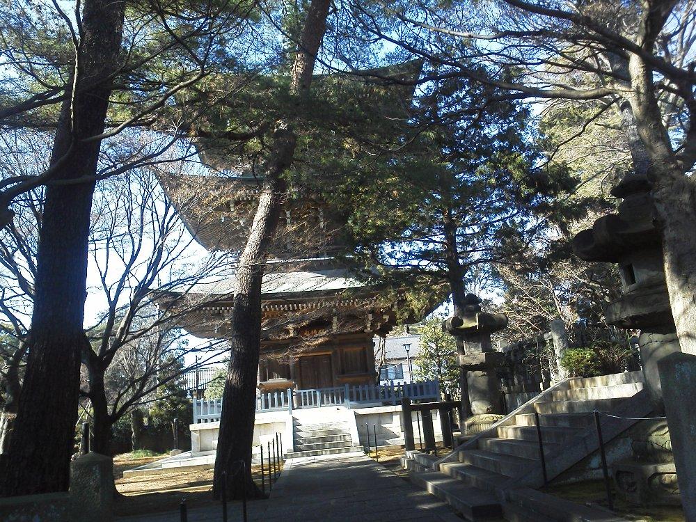 F1001379石神井公園豊島山道場寺