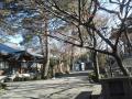 F1001380石神井公園豊島山道場寺