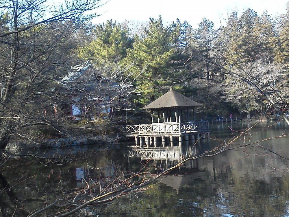 F1001391石神井公園厳島神社と浮御堂
