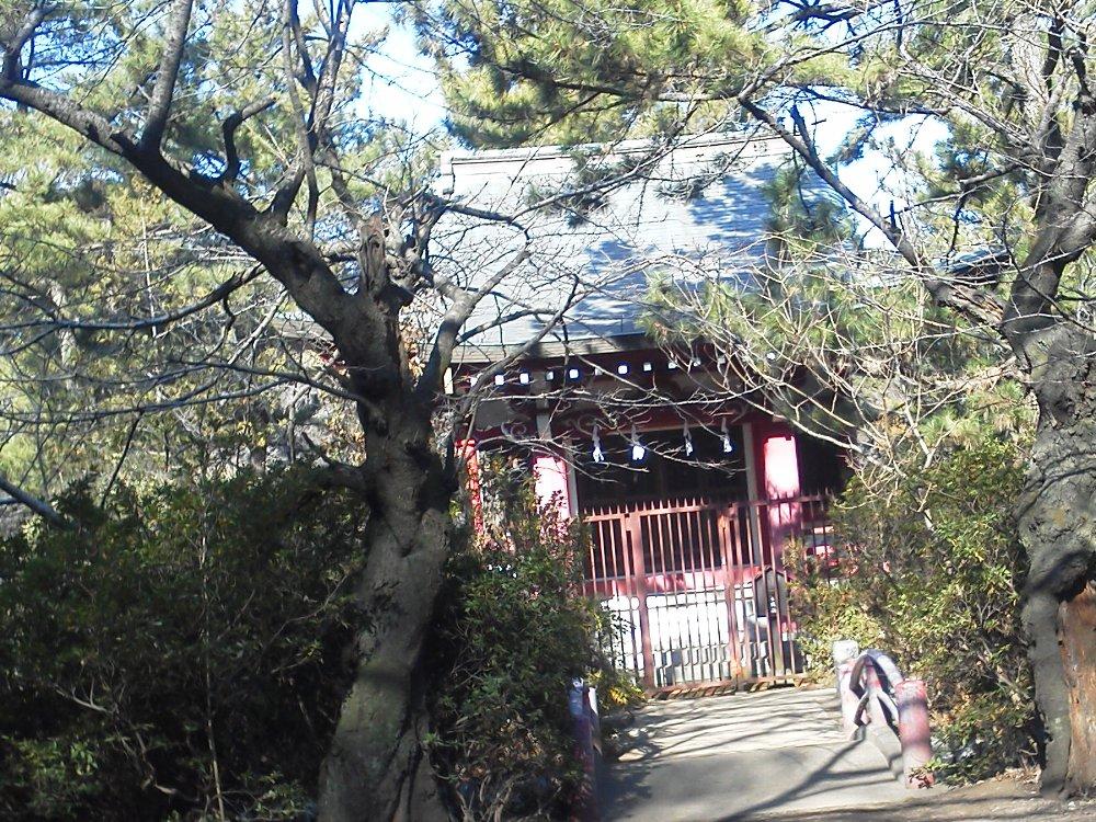 F1001392石神井公園厳島神社