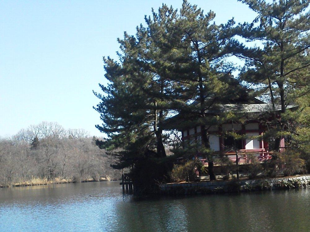 F1001395石神井公園厳島神社