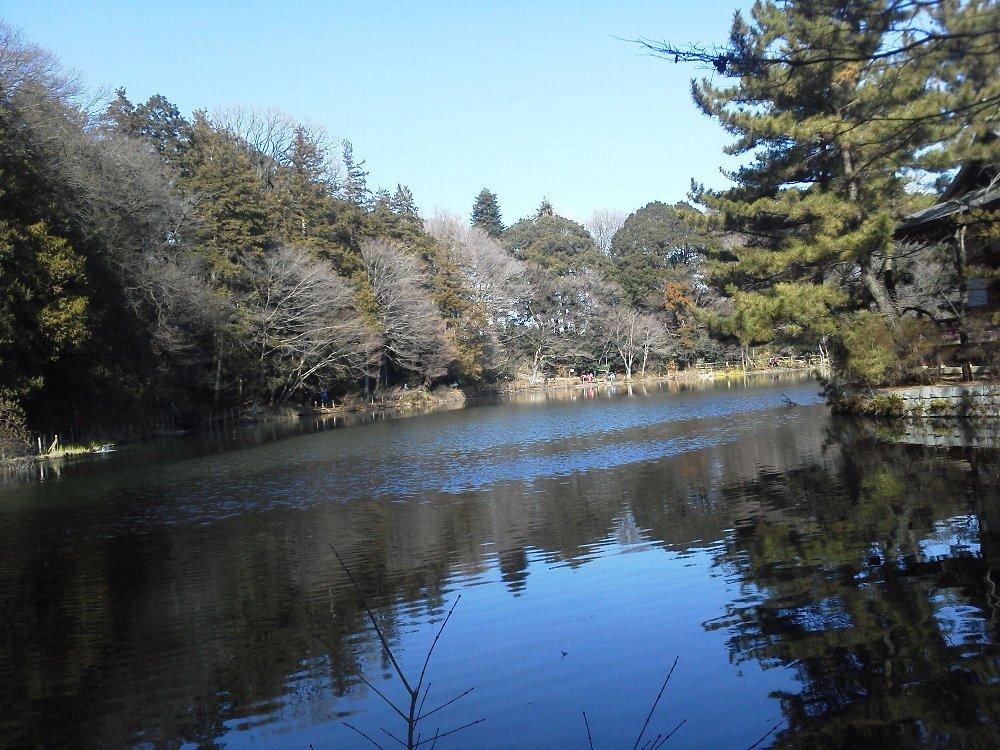 F1001394石神井公園