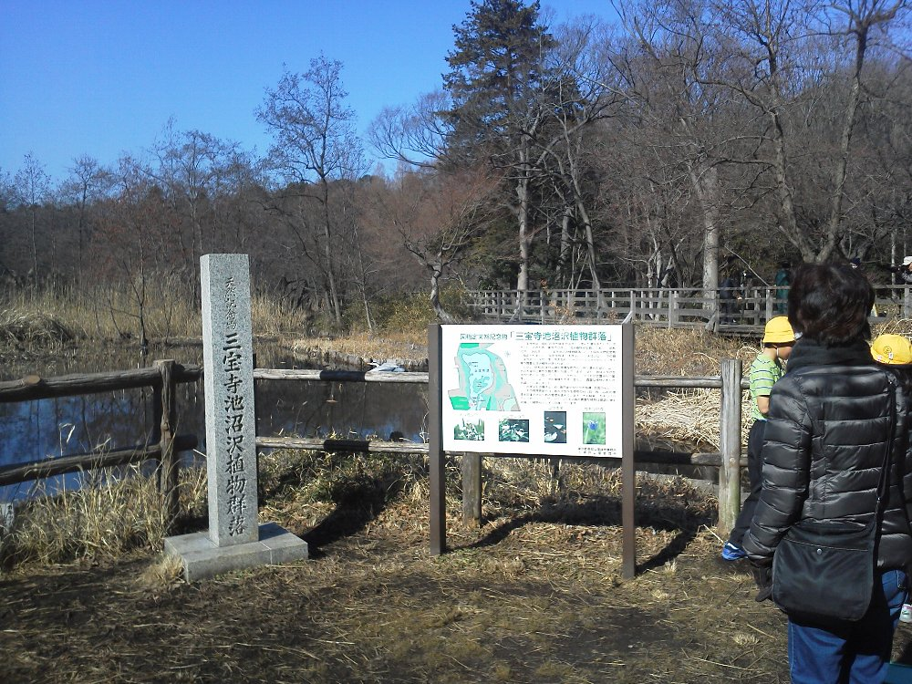F1001398石神井公園