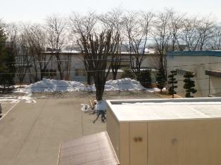 庭の残雪(13-2-26)