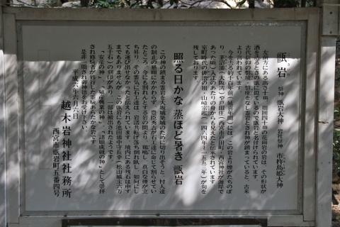 E7D_3682.jpg