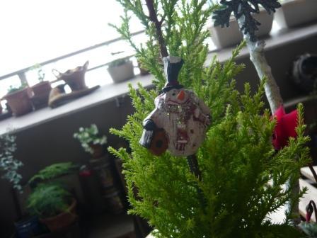 2010.12クリスマス&正月の寄せ植えとプリザのしめ縄飾りp5