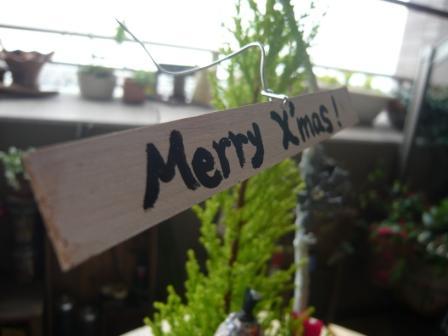 2010.12クリスマス&正月の寄せ植えとプリザのしめ縄飾りp7