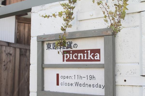 ブログ用ピクニカ