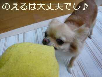 blog2010072906.jpg