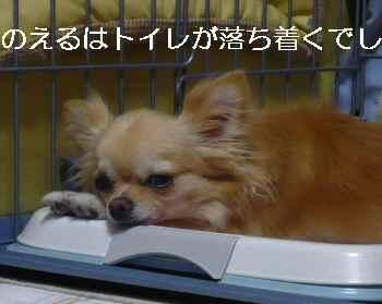 blog2010080201.jpg