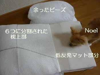 blog2010081002.jpg