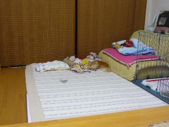 blog2010081401.jpg