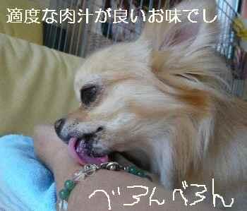blog2010090601.jpg