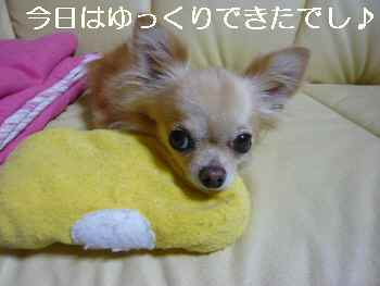 blog2010092202.jpg