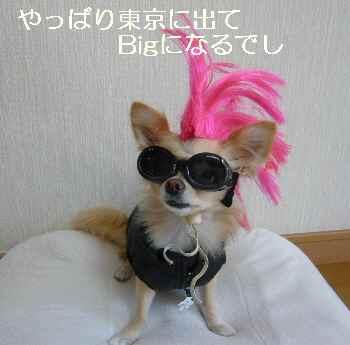 blog2010100604.jpg
