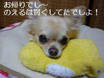 blog2010112201.jpg