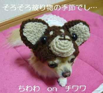 blog2010112403.jpg