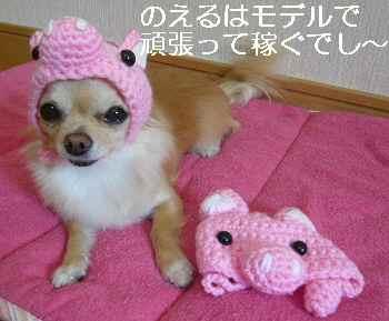 blog2010112603.jpg