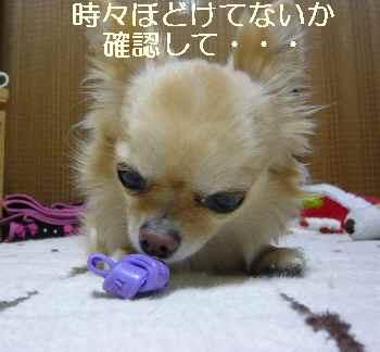 blog2011051903.jpg