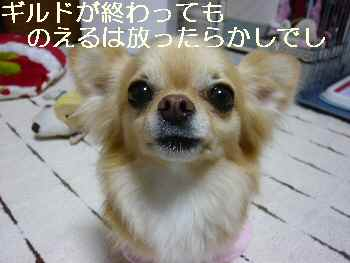 blog2011052301.jpg