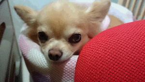 blog2014102205.jpg