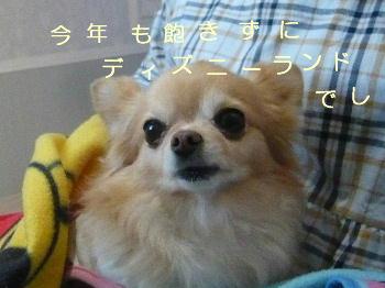blog2014112801.jpg