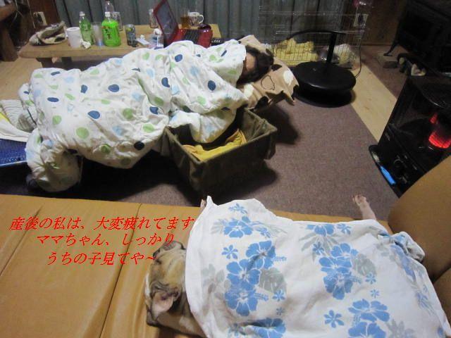 002_20120111014946.jpg