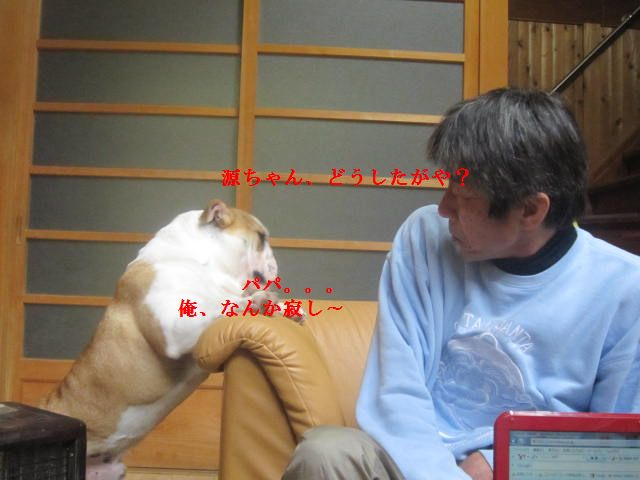004_20120119200813.jpg