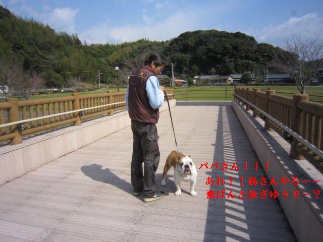 007_20120324175034.jpg