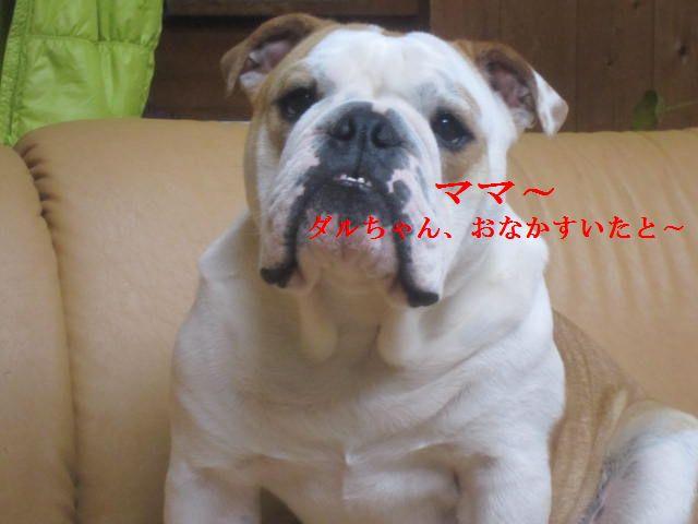 008_20120119200141.jpg