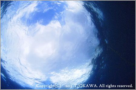 13_08_26_04.jpg