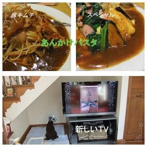 TVが来た!!