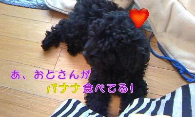 110612_0723+010001_convert_20110612073914.jpg
