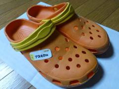 P1110590+AZUKI.jpg