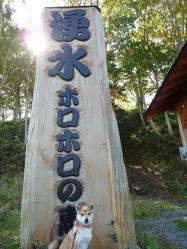 P1290061-AZUKI.jpg