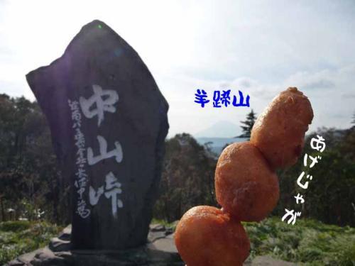 P1290211-AZUKI.jpg