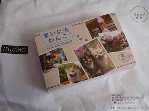 P1310105-AZUKI.jpg