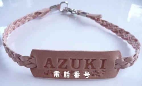 P1320054-AZUKI.jpg