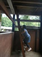 忍者の塔はしご