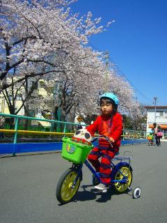 ゆーひ君自転車の練習