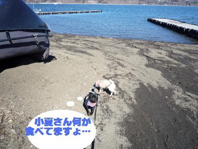 山中湖で2