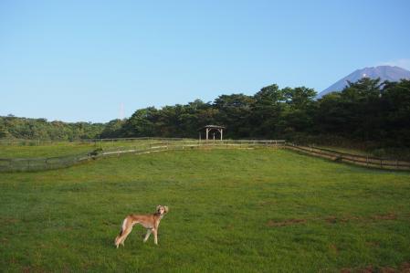 2012-08-03 ぐりんぱ大規模キャンプ 141s