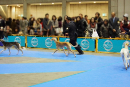 2013-12-15 東京インター 157s