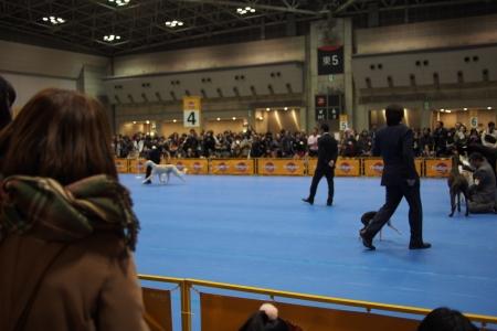 2013-12-15 東京インター 200s